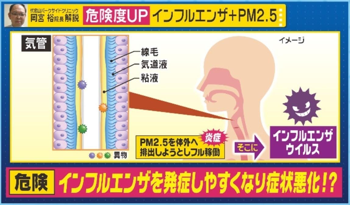 インフル花粉PM2.5 -2.jpg