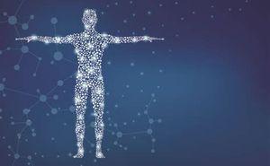 body energy.jpg