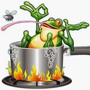 frog cookin3.jpg