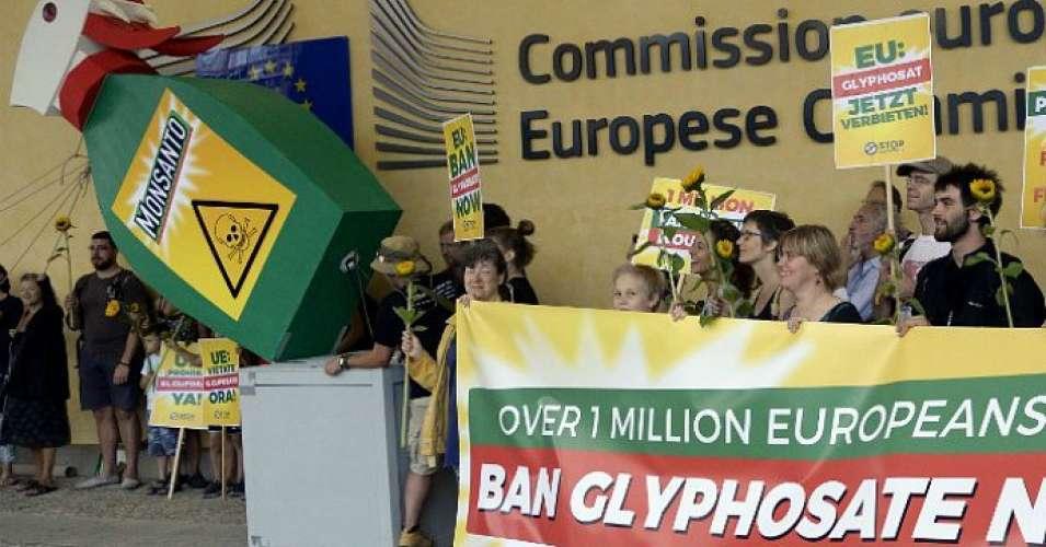 glyphosate-crop.jpg