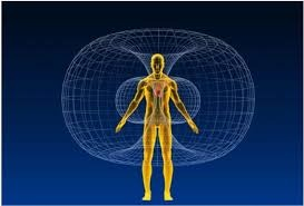 toroidal-humano.jpg