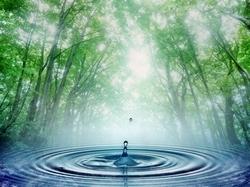 vital-water-by-TeslaWaterkit.jpg